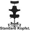 Standardsitzfäche-Kopfstütze
