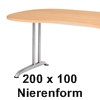 200 x 100 cm Nierenform